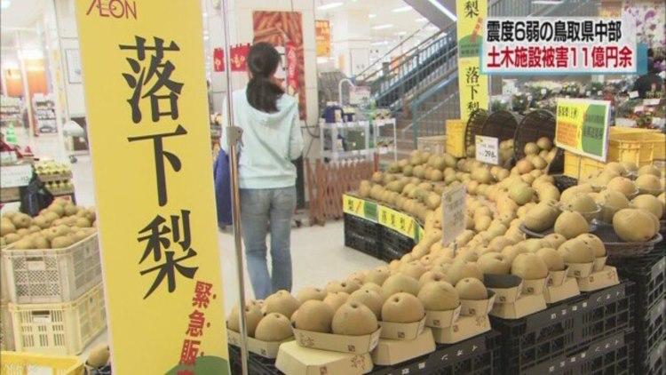 鳥取中部地震の影響で被害に遭った「落下梨」、支援のために購入したいとの声