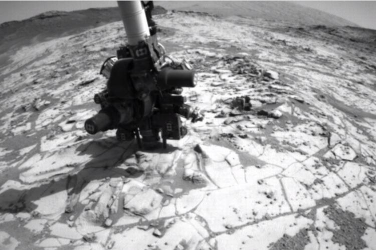 """【映像】火星にゴキブリ?カニ?がいた!NASAの動画にうごめく謎の""""無脊椎動物""""のような物体が"""