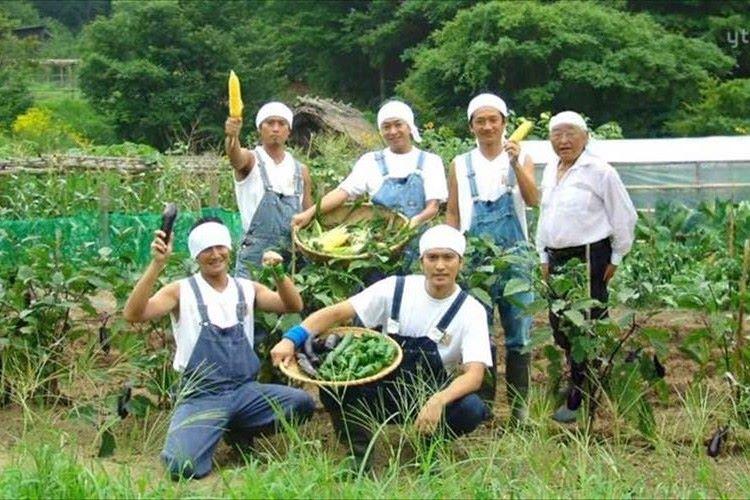さすがアイドル兼農家! TOKIOの会報誌は農作業の報告が充実…むしろJAの会報誌だった