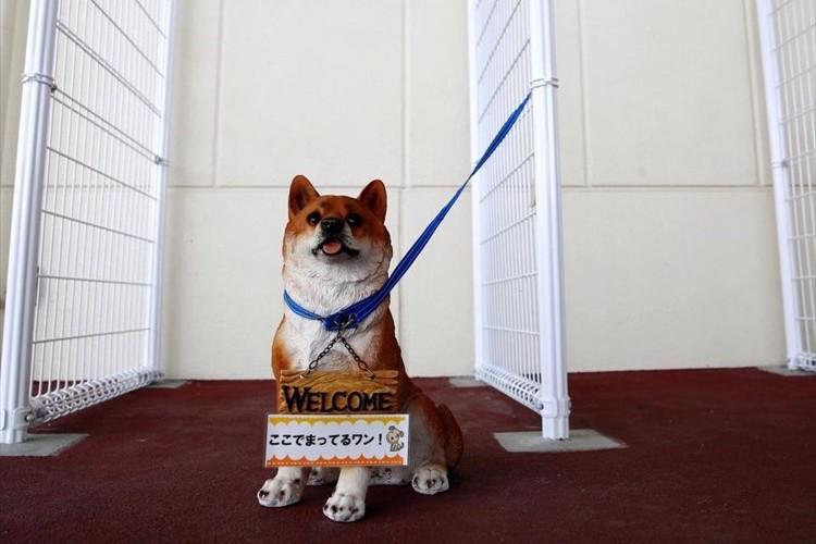 犬を繋ぐことができるスペースをスーパーに設置! 「駐犬場」に賛否両論