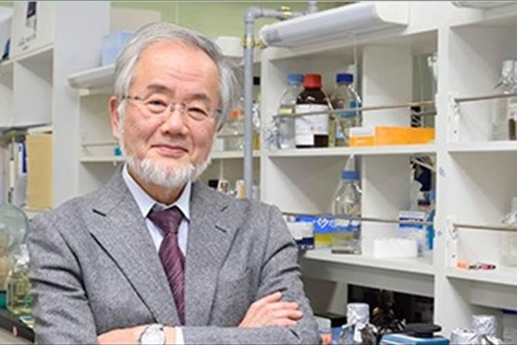 【ノーベル賞】医学生理学賞に大隅良典・東工大栄誉教授が受賞!