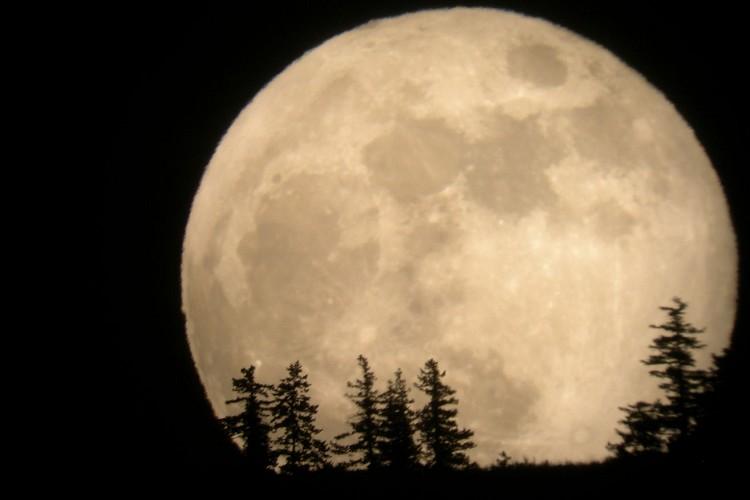 11月14日は『スーパームーン』!68年ぶりの明るく大きな月に願いを掛けよう