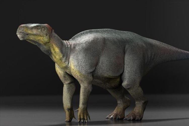 """【史上初】イギリスで見つかっていた化石を調べた結果""""恐竜の脳みそ""""だと判明!"""