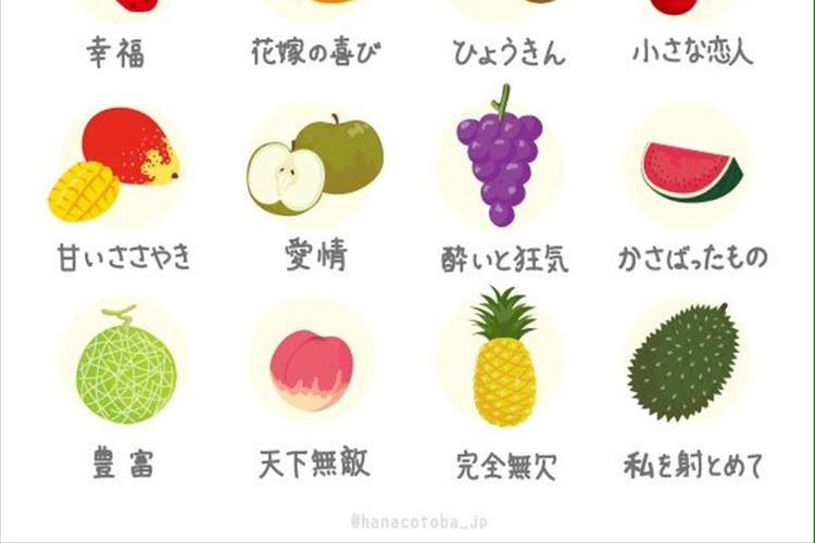 スイカだけ何か違う…たくさんある果物の花言葉、一つだけ冷蔵庫に入れた時の感想だった
