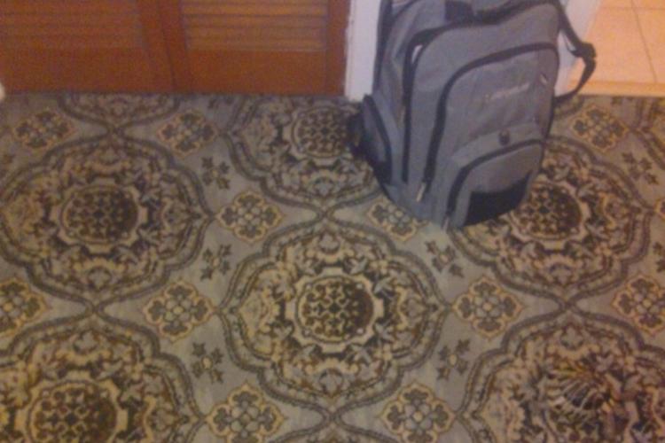 ある動物がカーペットに隠れています。見事なまでにカモフラージュに驚きの声