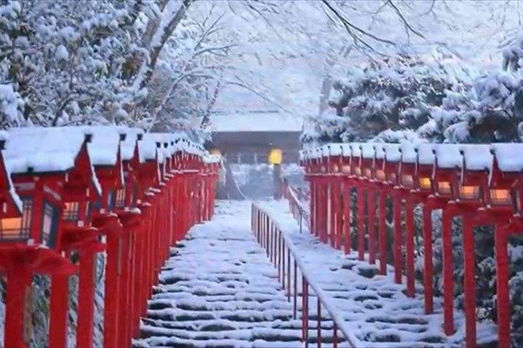 【動画】貴船神社に雪が降りそそぐ景色が神秘的! 積雪日限定ライトアップも必見