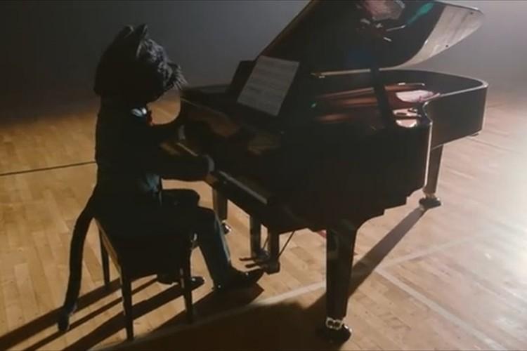 「ねこふんじゃった」バラード篇がドラマチックで胸に響く クロネコヤマト40周年記念