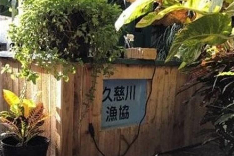 津波で流失した水槽がハワイで見つかるも、漁協は「今の持ち主に使ってほしい」