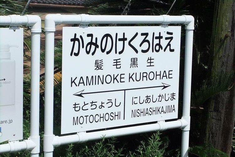 髪毛黒生駅で話題となった銚子電鉄が、日本初の育毛列車「黒髪祈願号」を運行!