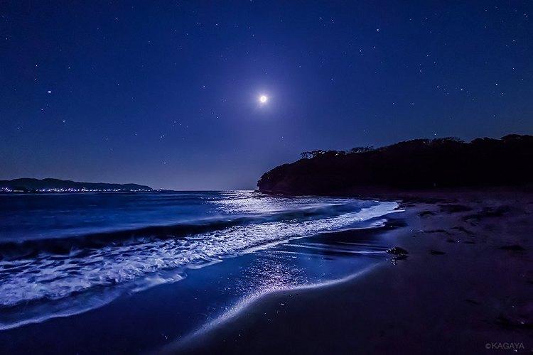 絶句…房総半島でみられた幻想的な『月光に照らされる海』の写真が美しすぎる