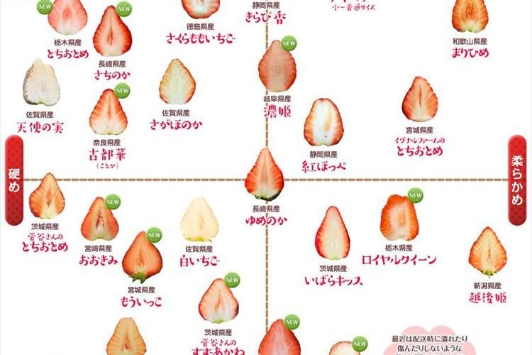 食べ比べしたくなっちゃう!築地市場が作った28種類のイチゴの品種別分布図が分かりやすい!