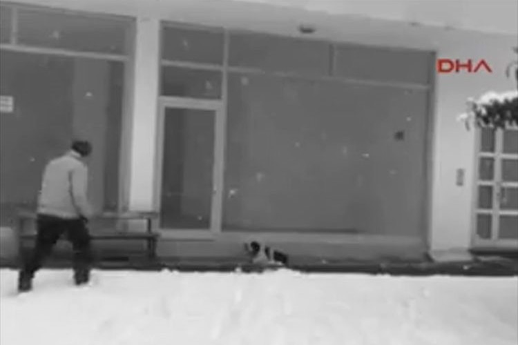 雪の日 寒さでふるえる子犬に自分の上着をかけて立ち去っていった男性が話題に!