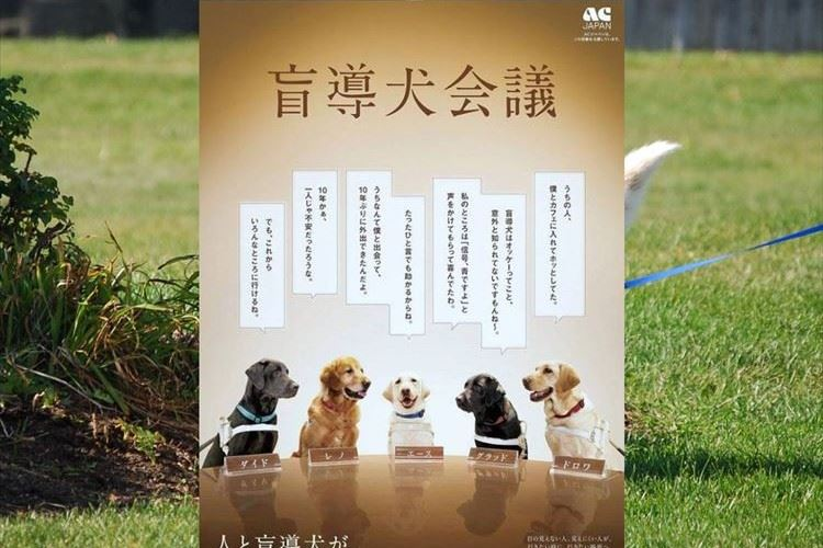 盲導犬ユーザーの事を多くの人に知ってもらいたい…盲導犬目線の広告に多くの反響