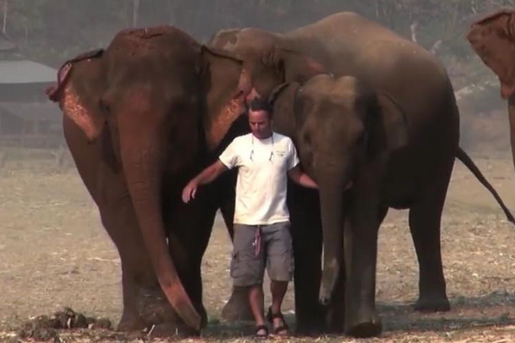 「本当にゾウと友達なんだな」男性とゾウたちのたわむれる光景に厚い信頼関係を感じる