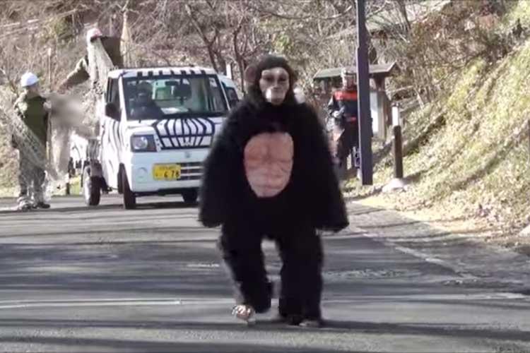 """""""地震でチンパンジーが脱走!?""""多摩動物公園の避難訓練が本格的だと話題に!"""