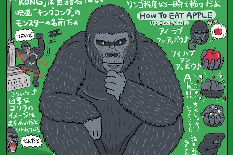 ゴリラが愛おしく思える!ゴリラの知られざる生態の図解が解りやすい。