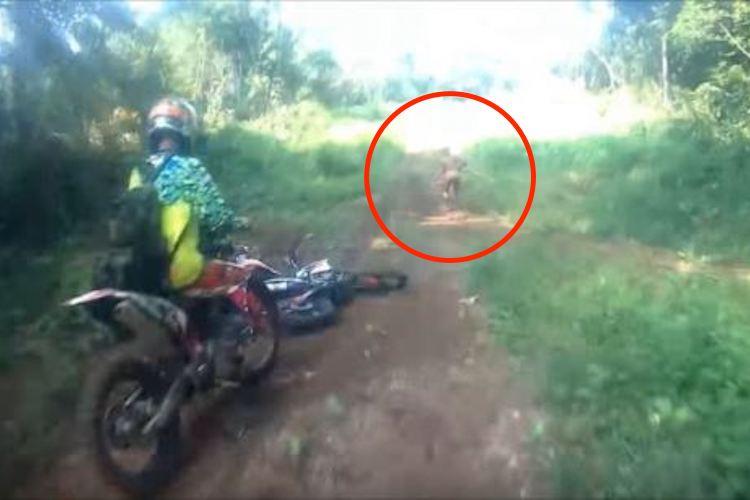 【ミステリー映像】伝説の小人族「マンテ族」の撮影に成功か!?茂みから走り去る人影が