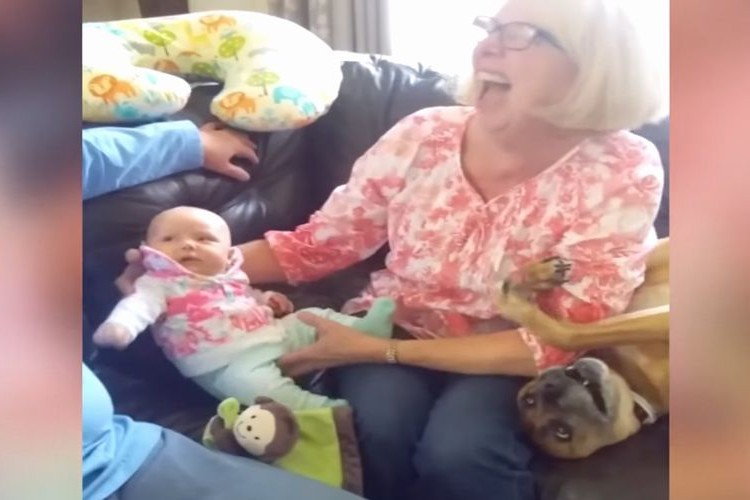 「ボクにもかまってよ~!」赤ちゃんにヤキモチを焼くワンコが可愛すぎ!