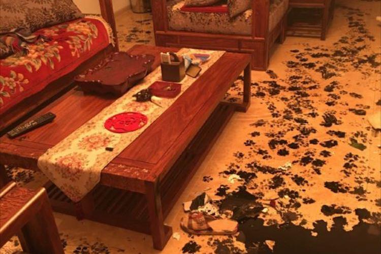 犯人はだれ?家を3時間留守にしたら床に犯人の足跡が残されていた