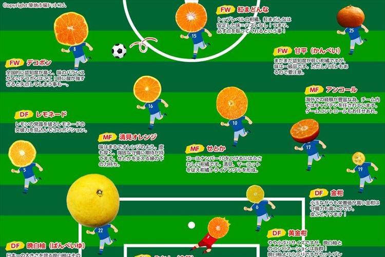 デコポンや金柑がサッカー選手に!築地市場が作った「柑橘」の美味しさ分布図が分かりやすい