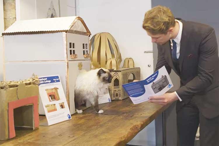 ニャンコさま、どのお住まいがお好み?ネコのための不動産屋がオープン!