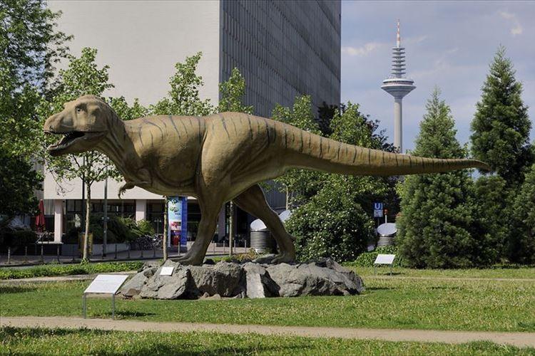 """1965年に下関で採集された岩石が""""未確認種の恐竜の卵の化石""""と判明!! 国内初発見の恐竜の化石に!"""