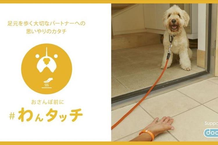 夏の散歩は犬の肉球が危険!愛犬を火傷から守る「#わんタッチ 」を習慣に
