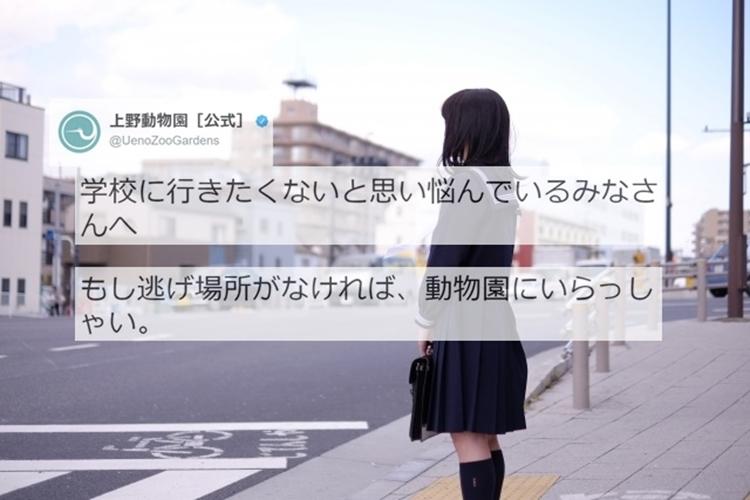 """悩める学生に向けた上野動物園のツイートが""""温かい言葉""""だと話題に!"""