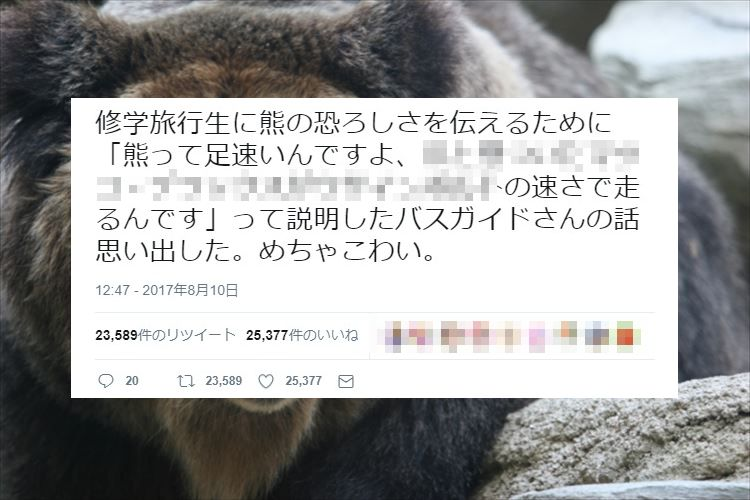 想像したら超恐い!熊の恐ろしさを説明した例えがめちゃくちゃ分かりやすいと話題に