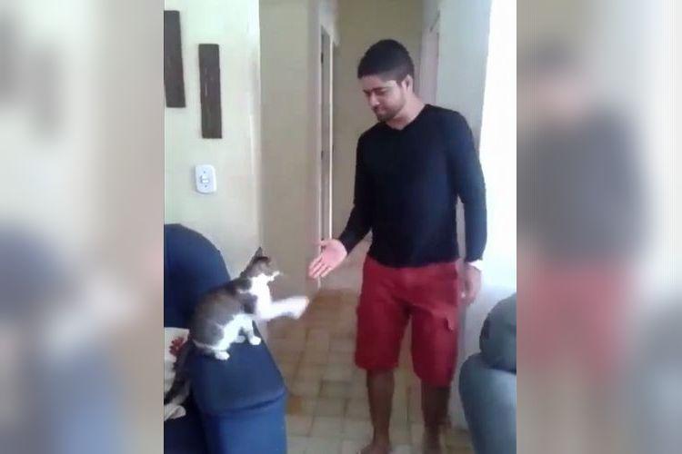 「YO!げんき~!?」猫と飼い主のめちゃくちゃ息ピッタリな挨拶が超クール!