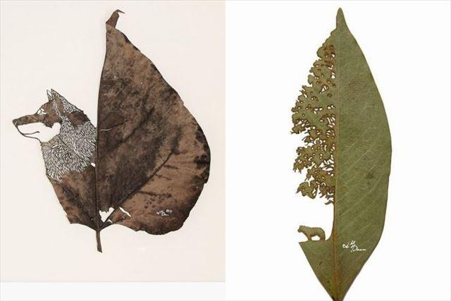 leaf_main