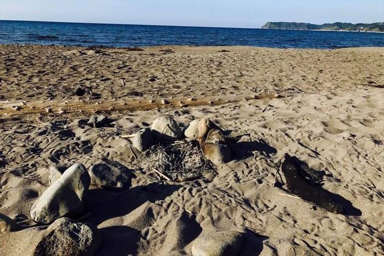 砂浜にバーベキューの炭を放置→男児がやけど…温泉旅館がマナー違反に注意喚起