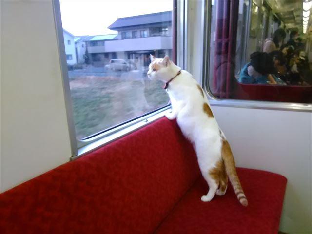 train_01_640