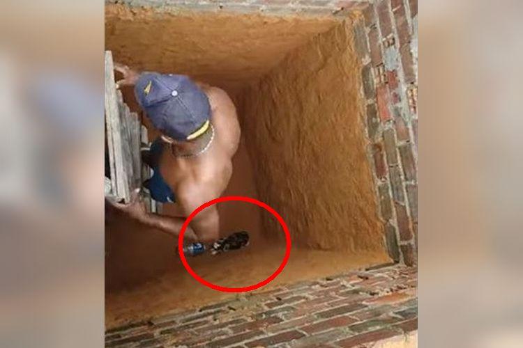 「あ、猫が穴に落ちてる!助けなきゃ!」→まさかの衝撃的な結末が待っていた