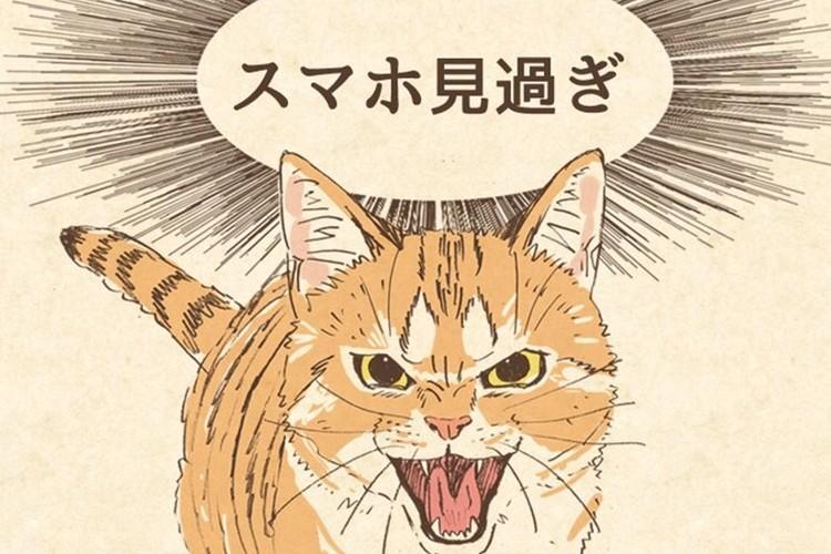スマホの見過ぎを猫が怒ってくれる待ち受け画像が人気!