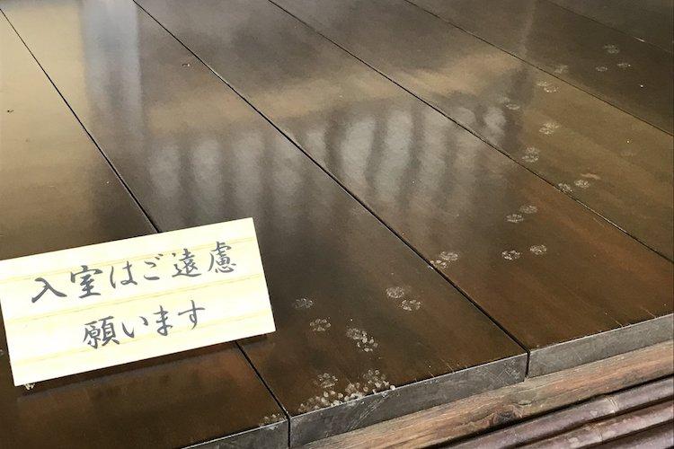 入室禁止の表示があるにも関わらず、とある侵入者の足跡が発見されて話題に!
