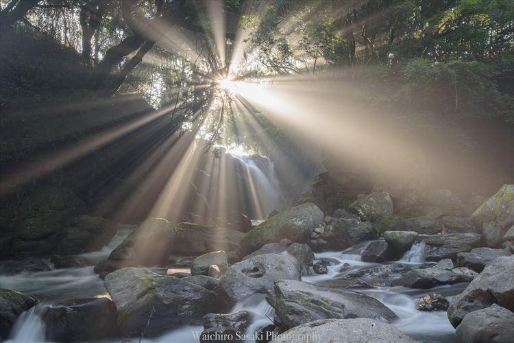 この光景を見るために一年間通い続けた…熊本で撮影された神々しい光景が話題に!