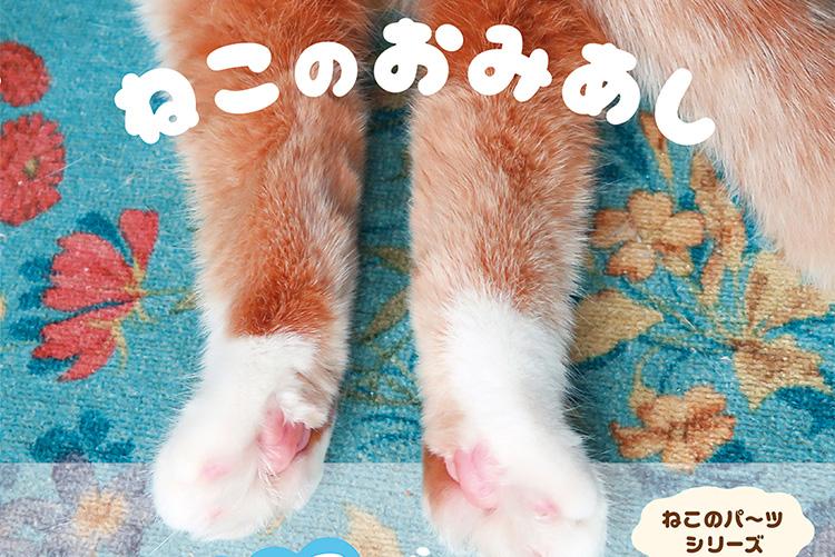 思わずスリスリしたくなる、猫の後ろ足を集めた写真集『ねこのおみあし』が発売!