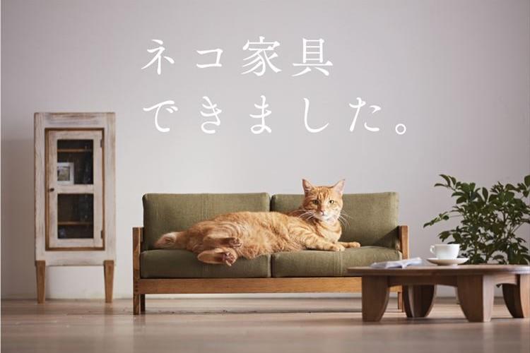 人間用かと思った…ミニサイズでハイクオリティの「ネコ家具」が登場!