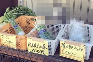 野菜の無人販売所に現れたかわいすぎる店員さん!これは買わずにはいられないとTwitterで話題に!