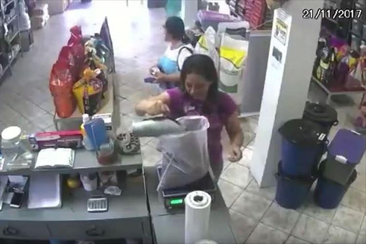 とあるお店に可愛い強盗が侵入!?あっという間にお金を持ってっちゃった