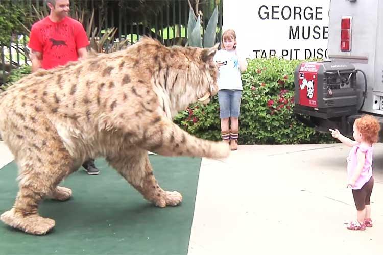 """そんなに近づいて大丈夫!?突然現れた""""巨大猫""""にロサンゼルスの街が騒然!"""