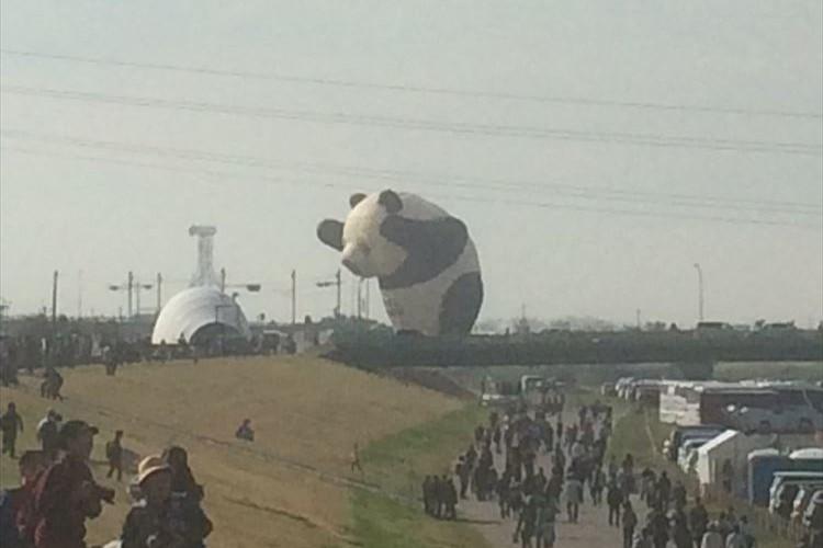 パンダが佐賀の街を破壊!?バルーンフェスタで飛んだパンダがまるで怪獣映画みたい