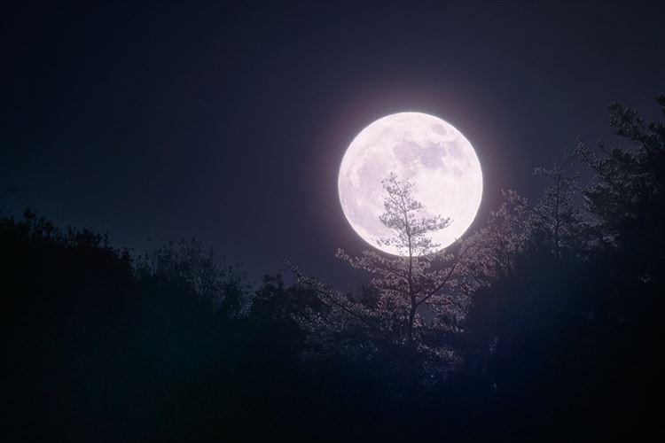 今年一番大きく見える満月『スーパームーン』を撮影した神秘的な写真に反響!