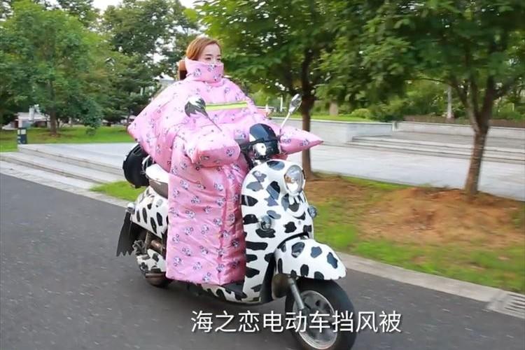 """""""中国で売られているバイク用防寒カバー""""が暖かそうだけど、もはや布団"""