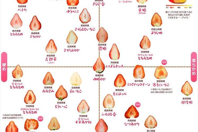 39種類もあってめちゃ勉強になる!『イチゴの品種別分布図』の最新版を築地市場が大公開!