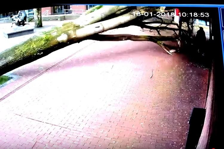 間一髪!監視カメラが捉えたあと一歩間違っていたら大惨事の映像に肝を冷やす!