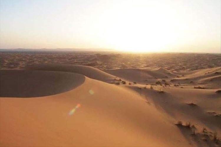 """【必見】サハラ砂漠に雪が積もって""""真っ白な砂漠""""に!?場所によっては40cm積もった所も"""