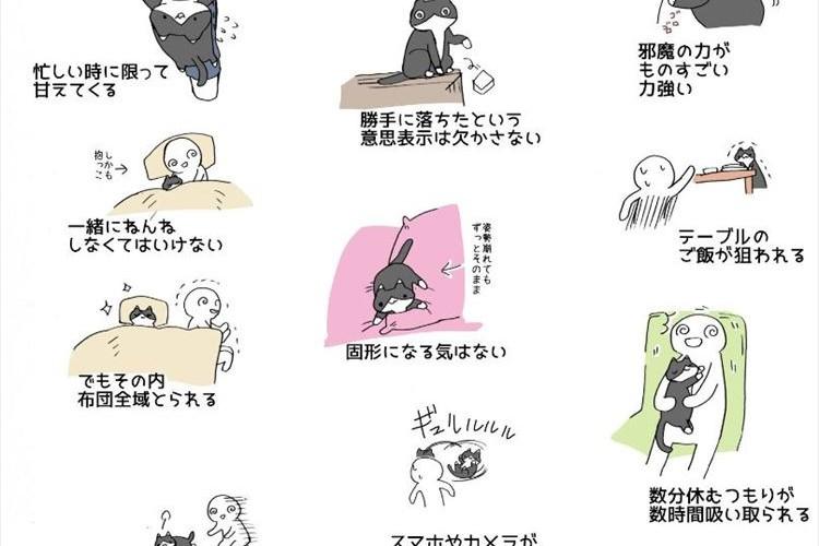 """""""猫を飼うことの大変さ""""を表現したイラストに多くの共感の声「切なくなる」「猫最高です」"""