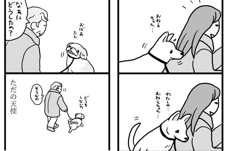 犬ってどうしてこんなにかわいいの!ピュアな犬たちを描いた漫画が癒されると話題